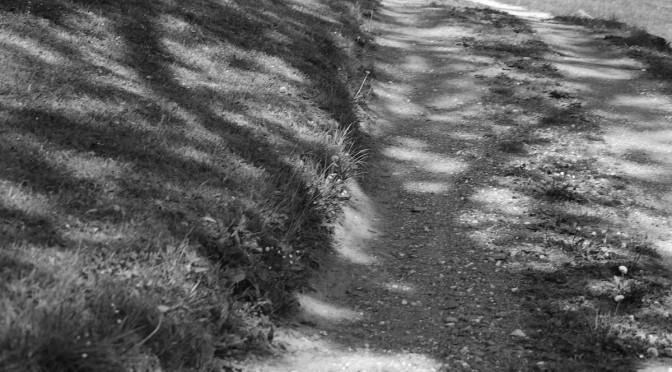 Nenávist nesmí jít až za hrob – Věřina cesta